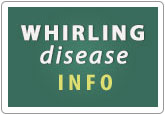 Whirling Disease Info